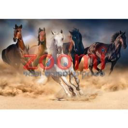 פאזל סוסי פרא – 1000 חלקים